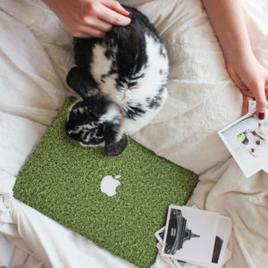 Grass Macbook Skin