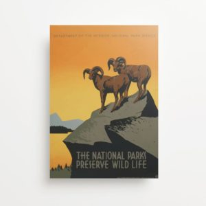 """National Parks Of USA"" Vintage Travel Ad Giclee Print"